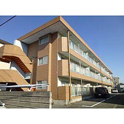 神奈川県小田原市久野の賃貸マンションの外観