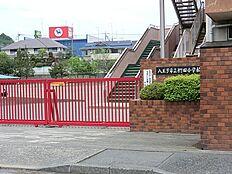 八王子市立椚田小学校まで1100m