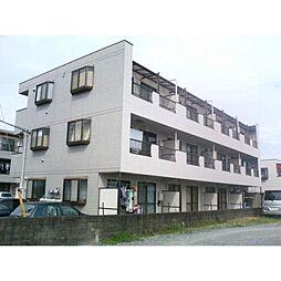 神奈川県横浜市泉区和泉中央北4丁目の賃貸マンションの外観