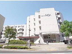 メゾン・ド・ノア聖蹟桜ヶ丘[4階]の外観