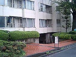 パイロットハウス北新宿[333号室]の外観