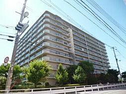 大阪府大阪市平野区平野北1丁目の賃貸マンションの外観