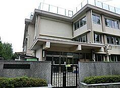 小学校練馬区立 田柄第二小学校まで777m