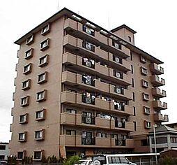 プラムハイツ2[8階]の外観