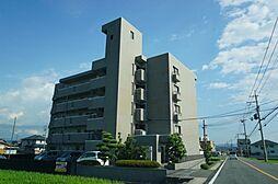 セレーナきい[4階]の外観