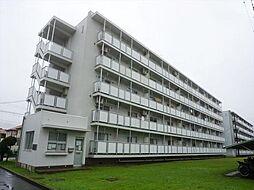 ビレッジハウス古和釜1号棟[2階]の外観