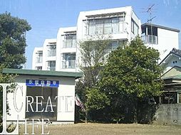 埼玉県さいたま市南区曲本3丁目の賃貸マンションの外観