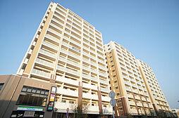 RJRプレシア新宮中央駅前[13階]の外観
