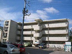 ビッグバーンズマンション新札幌[403号室]の外観