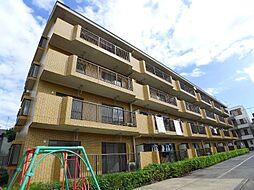 千葉県松戸市南花島2丁目の賃貸マンションの外観