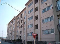 仁川マンション[405号室]の外観