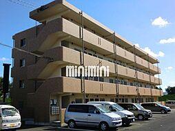 ユーミーSUZUKI[4階]の外観