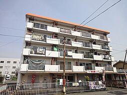 サンハイツ西ノ京[4階]の外観