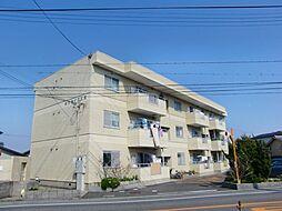 ネオライフ阪南[2階]の外観
