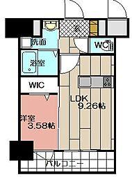 THE HILLS KOKURA[1205号室]の間取り