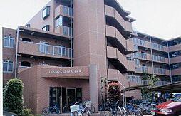 埼玉県さいたま市浦和区領家6丁目の賃貸マンションの外観