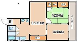 兵庫県神戸市須磨区若木町2丁目の賃貸マンションの間取り