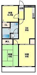 愛知県岡崎市洞町字五位原の賃貸マンションの間取り
