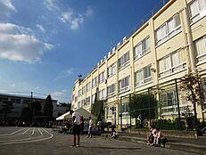 中野区立向台小学校