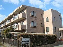 神奈川県茅ヶ崎市菱沼3丁目の賃貸マンションの外観