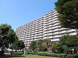 ローヤルシティ鴨居参番館[7階]の外観
