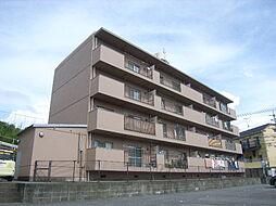松崎コ−ポ[4階]の外観