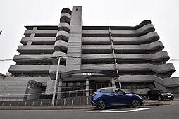 愛知県名古屋市中川区十番町5丁目の賃貸マンションの外観