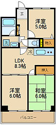 千葉県松戸市常盤平陣屋前の賃貸マンションの間取り