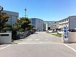 鶴城中学校 徒歩 約11分(約832m)