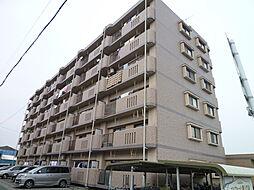 三重県松阪市川井町の賃貸マンションの外観