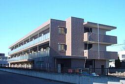 埼玉県川口市上青木5丁目の賃貸マンションの外観