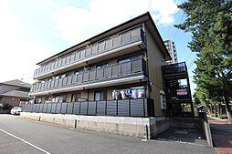 パインコート松籟通り[3階]の外観