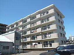 シティAZUMA[305号室号室]の外観