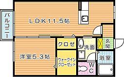 シルエラ[2階]の間取り