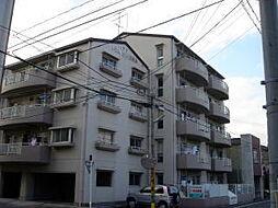 ドエル昭和[2階]の外観