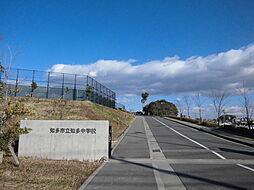 知多市立知多中学校 徒歩 約15分(約1200m)