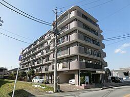 千葉県船橋市夏見1丁目の賃貸マンションの外観