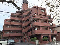 埼玉県川口市上青木4丁目の賃貸マンションの外観