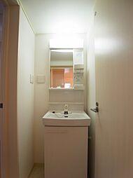 シャワー付き洗面化粧台が完備されています