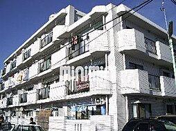 白砂ヒルズ[4階]の外観