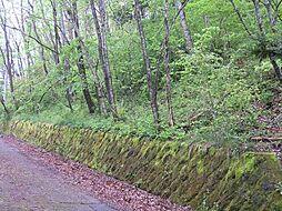 千ヶ滝東区別荘地