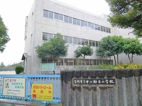 宝塚市立中山桜...