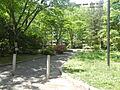 五橋公園へ徒歩...
