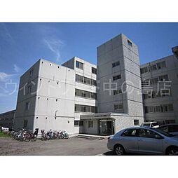 ロイヤルレインボー平岸A棟[5階]の外観