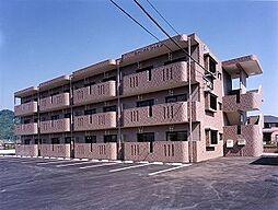 鹿児島県霧島市国分新町の賃貸マンションの外観