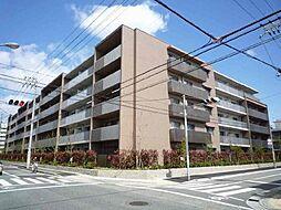 甲子園三番町ハイツ[310号室]の外観