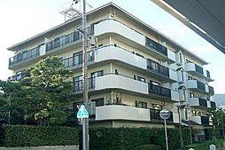 住吉川アーバンライフ[3階]の外観