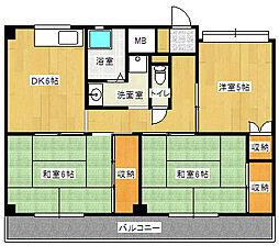 岡山県岡山市東区西大寺松崎の賃貸マンションの間取り