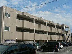 静岡県三島市富田町の賃貸マンションの外観