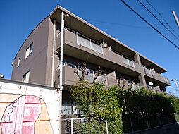 サニーコート鷹取[306号室]の外観